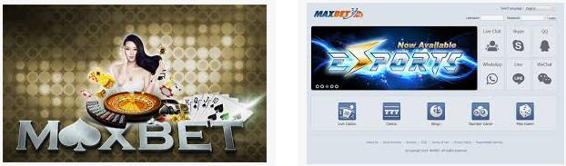 judi live casino maxbet
